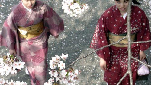 Instantanés du Japon en 1963 : entre samouraïs et boîtes de nuit
