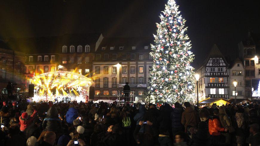 Strasbourg : le sapin de Noël sera installé place Kléber le 29 octobre