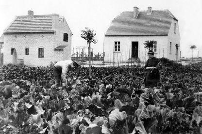 Si nous vivions en 1913... les travaux domestiques nous prendraient beaucoup de temps...