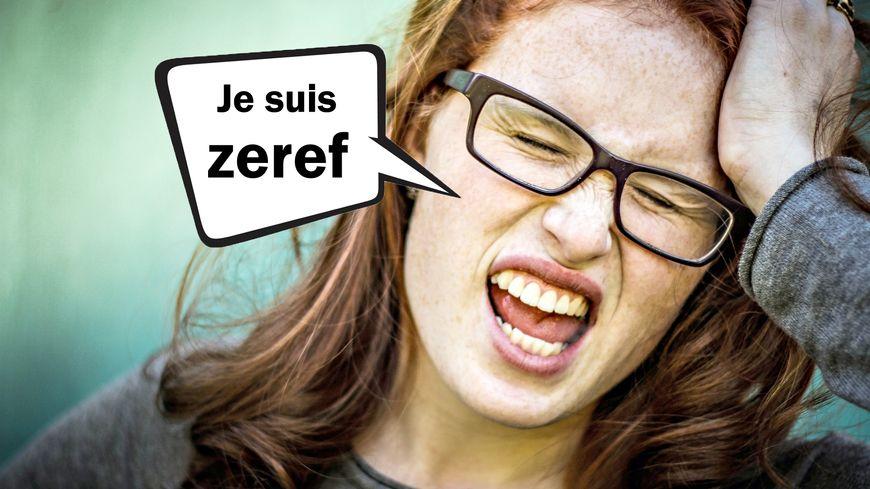 """La signification du mot """"zeref"""" dans le Dico des ados"""