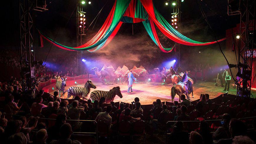 Les cirques d'IDF