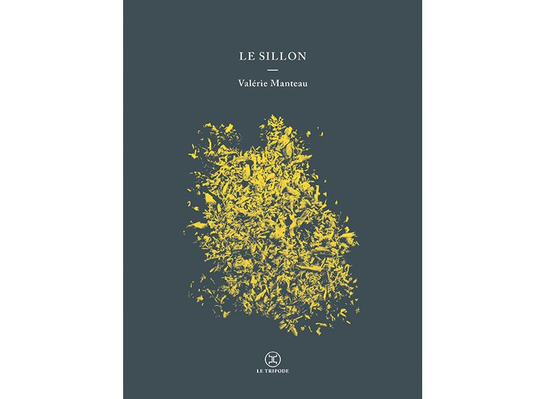 """""""Le sillon"""" de Valérie Manteau (Le Tripode)"""