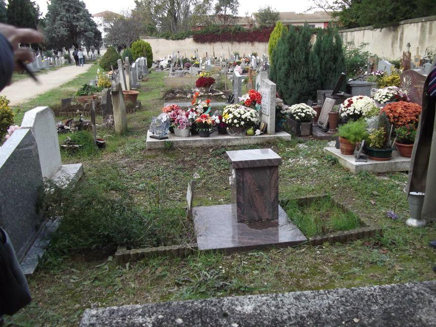 """Une alternative au colombarium pour la crémation, la sépulture parmi les tombes avec une """"cavurne"""" qui contient l'urne et les cendres"""