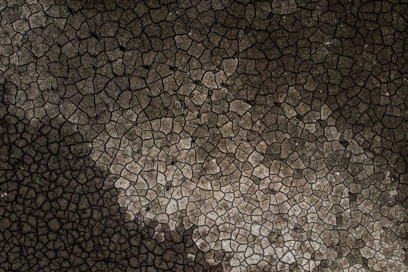 L'un des principaux risques liés au réchauffement climatique : la désertification de régions entières