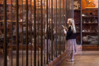 Jeune fille scrutant les vitrines au Muséum national d'Histoire naturelle