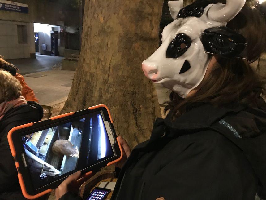 Avec des tablettes numériques, les militants ont pu montrer des vidéos des abattoirs aux passants.
