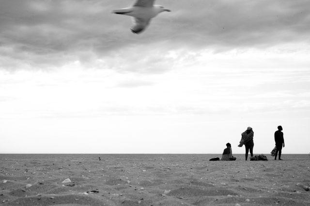 Vincent Delerm, pour Planche(s) Contact 2018, Deauville (2)
