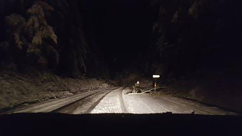 Le scénario se répète plusieurs fois : grosses branches sur la route Ussel-Bort