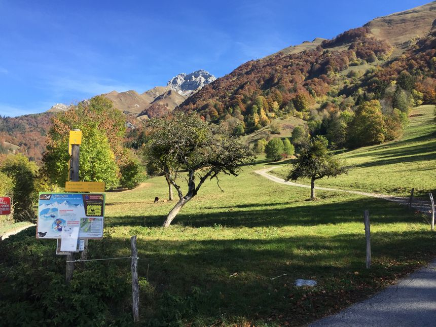 El decreto municipal está marcado en particular en la entrada de rutas de senderismo - Radio France