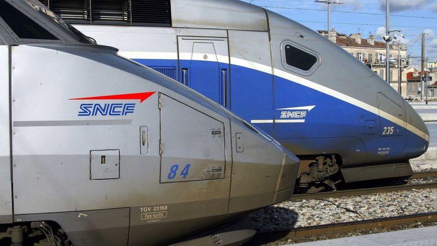 La gare TGV d'Allan verra-t-elle le jour ?