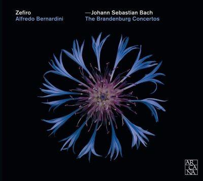 Les Concertos brandebourgeois par l'Ensemble Zefiro et Alfredo Bernardini