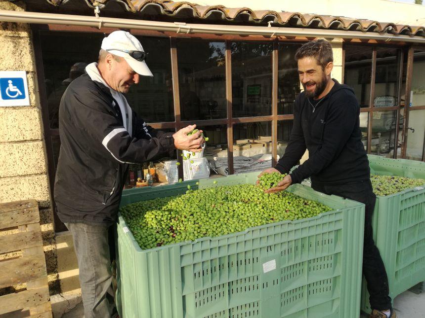 Bruno, 69 ans (à gauche), a rapporté 490 kilos d'olives au moulin. Il espère en retirer une soixantaine de litres d'huile.