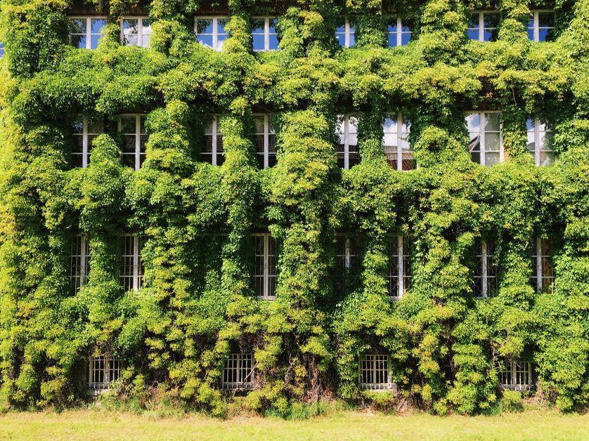 L'écologie est-elle toujours l'apanage des Verts ?