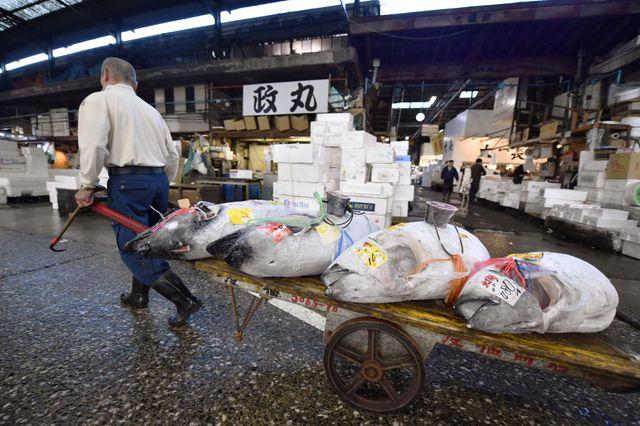 Un commerçant dans le marché de Tsukiji, transportant du thon.