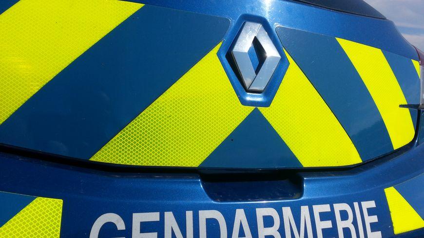 Les gendarmes sont intervenus rapidement pour raisonner l'individu (illustration)
