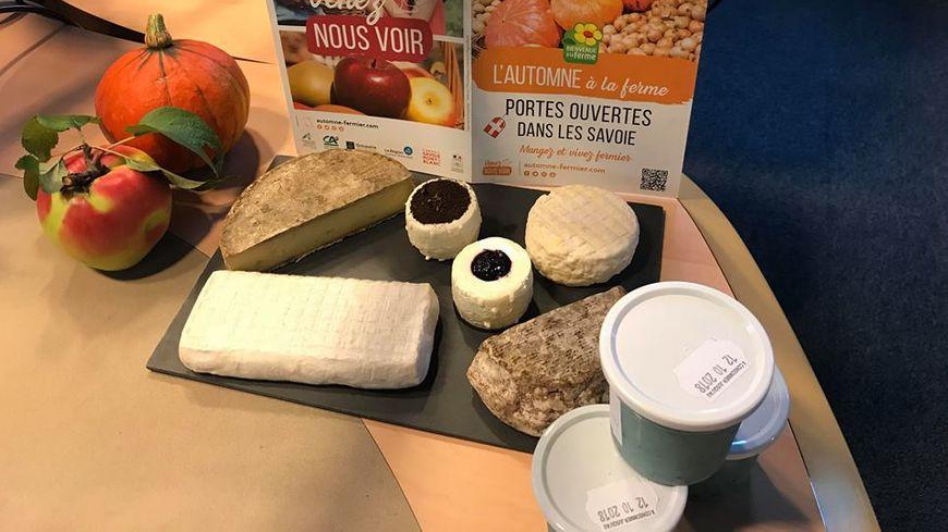 Fromages et yaourt à la spiruline