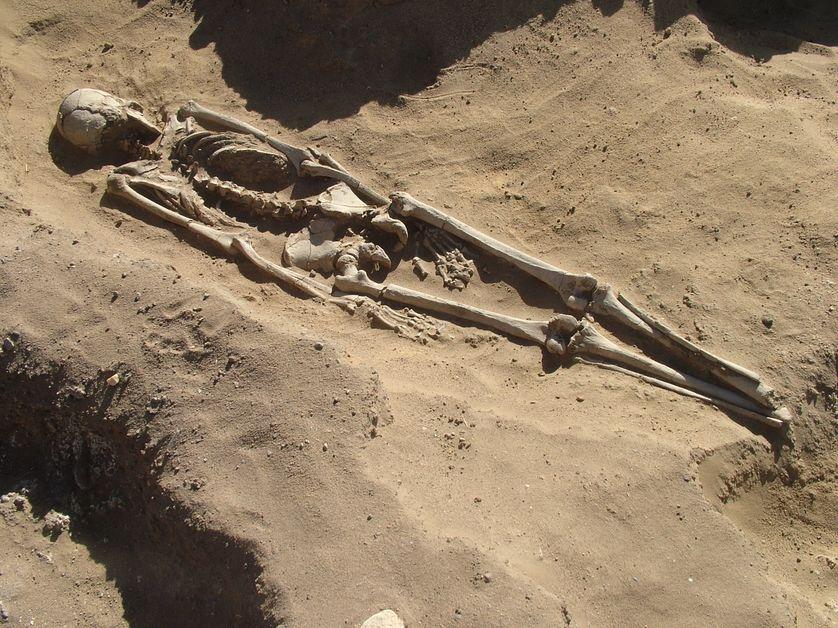 Vie et mort en Nubie mésolithique