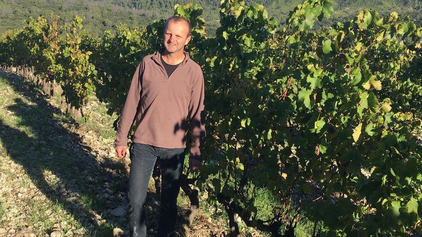 Le viticulteur Régis Valentin est dans ses vignes du Pic-Saint-Loup