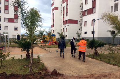 La main d'oeuvre des migrants subsahariens