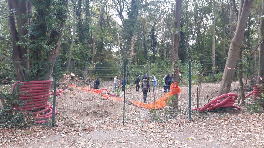 Des militants opposés à l'abattage d'arbres de la forêt de la corniche des forts à Romainville en Seine-Saint-Denis (octobre 2018)