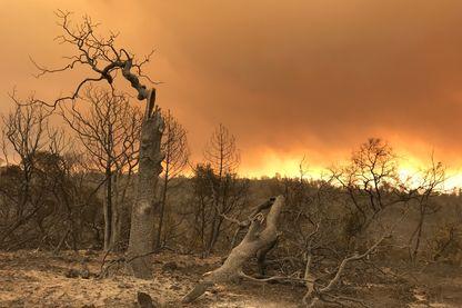 Les flammes surplombent toujours une bonne partie de la Californie