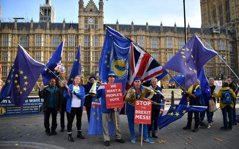 Alors que le gouvernement britannique se réunit pour étudier un projet d'accord sur le Brexit, des manifestants anti-Brexit agitent des drapeaux du Royaume-Uni et de l'Union européenne devant le Parlement, à Londres. (14/11/18)