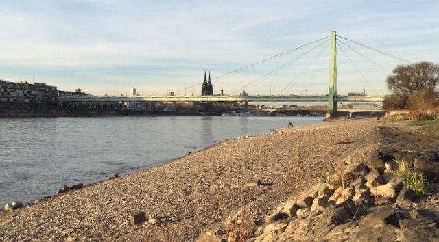 Avec un niveau d'eau d'1,15 mètre à Cologne, les bateaux de croisière touristique restent pour la plupart à quai