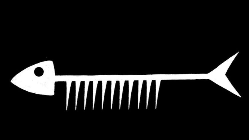 Le Peigne sardine, coiffure à domicile dans le pays de Douarnenez
