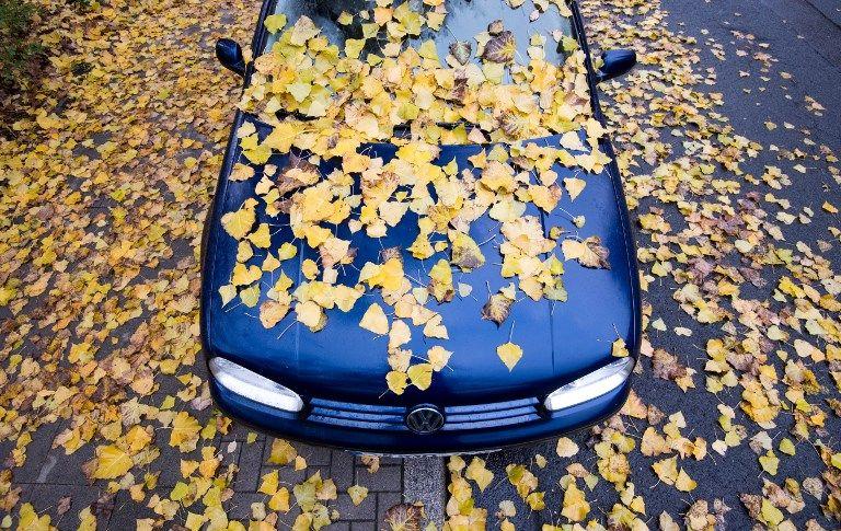 Les feuilles d'automne recouvrent une voiture Volkswagen garée. Photo prise le 8 novembre 2018 à Hanovre, dans le nord de l'Allemagne.