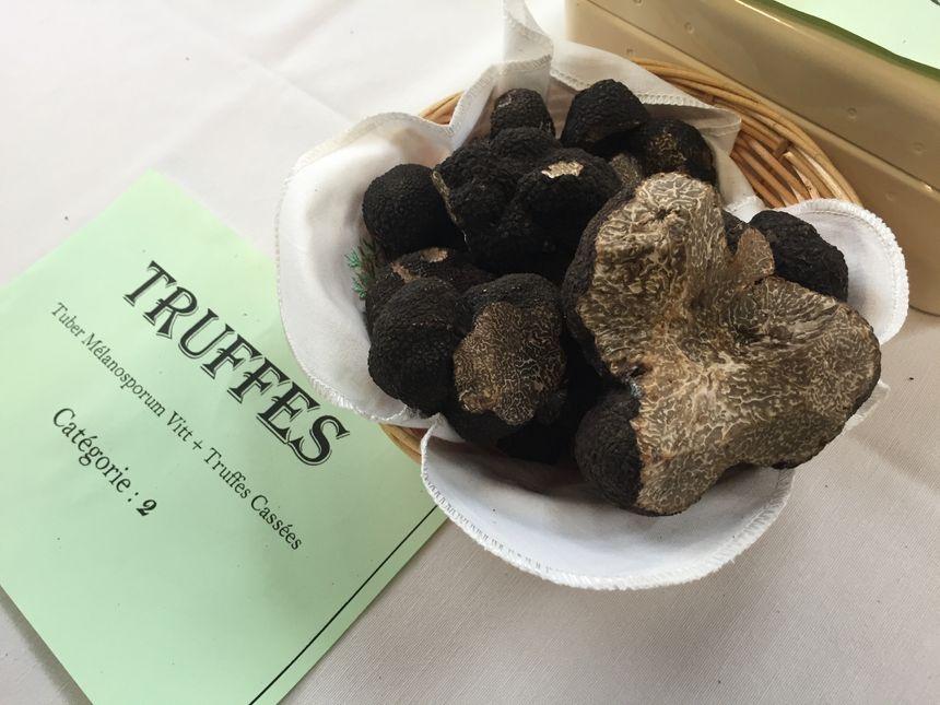Des truffes au marché de Sainte Alvère