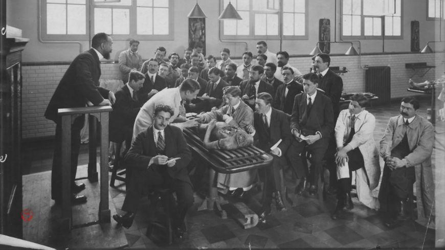 Leçon d'anatomie à l'Ecole de Médecine et de Pharmacie de Tours au début du XXe siècle