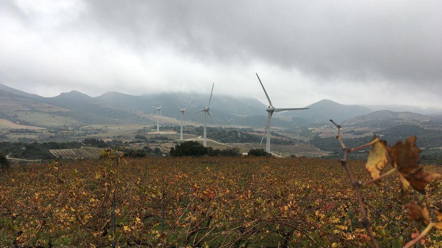 Des éoliennes dans le paysage des Fenouillèdes
