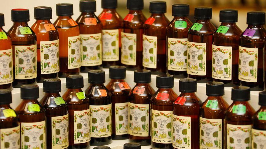 Grasse capitale mondiale du parfum