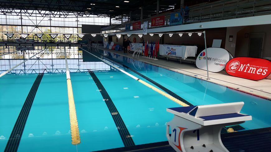 A Nîmes, Nemausa prête à accueillir la coupe du monde de plongée sportive en piscine