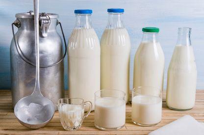 Le lait de foin arrive en France