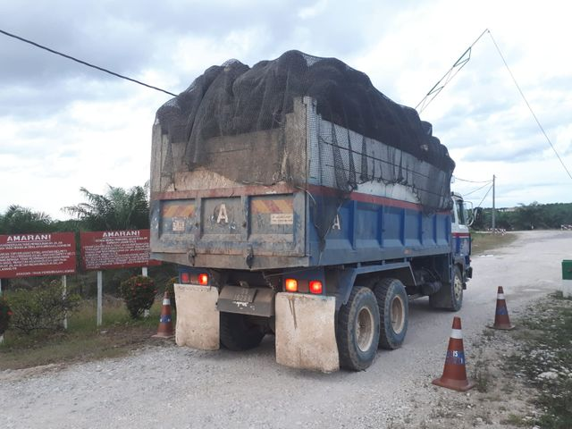 L'État de Sabah fournit 12% de la production mondiale d'huile de palme