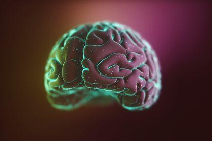 Quels sont les impacts du numérique et du digital sur notre cerveau ? Peuvent-ils modifier des choses ?