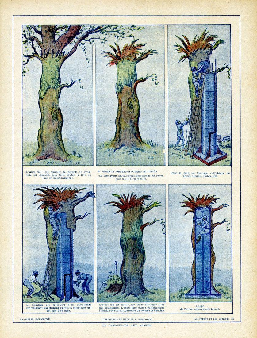 Le camouflage dans les arbres