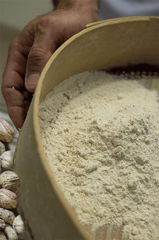 La farine de châtaigne sera encore rare cette année - Aucun(e)