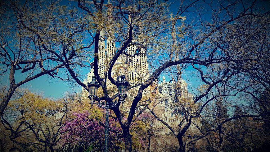 La Sagrada Família - Barcelone