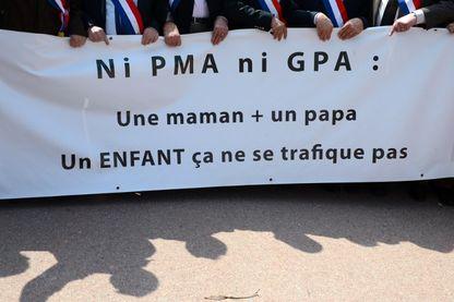 Manifestation contre la PMA et la GPA à Lyon, le 05 mai 2013.