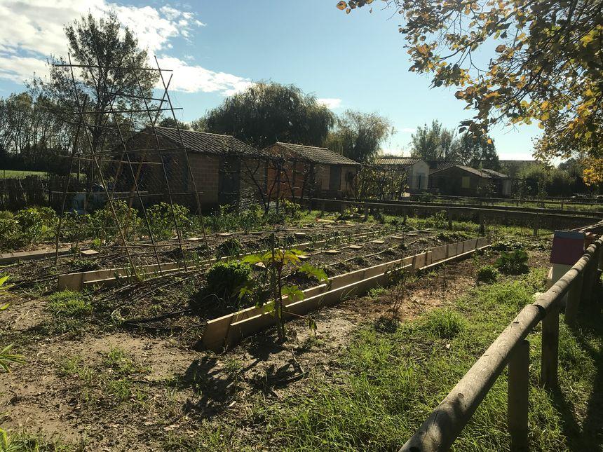Place au repos pour la plupart des jardins de Monfavet.