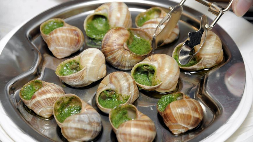 Un plat d'escargots