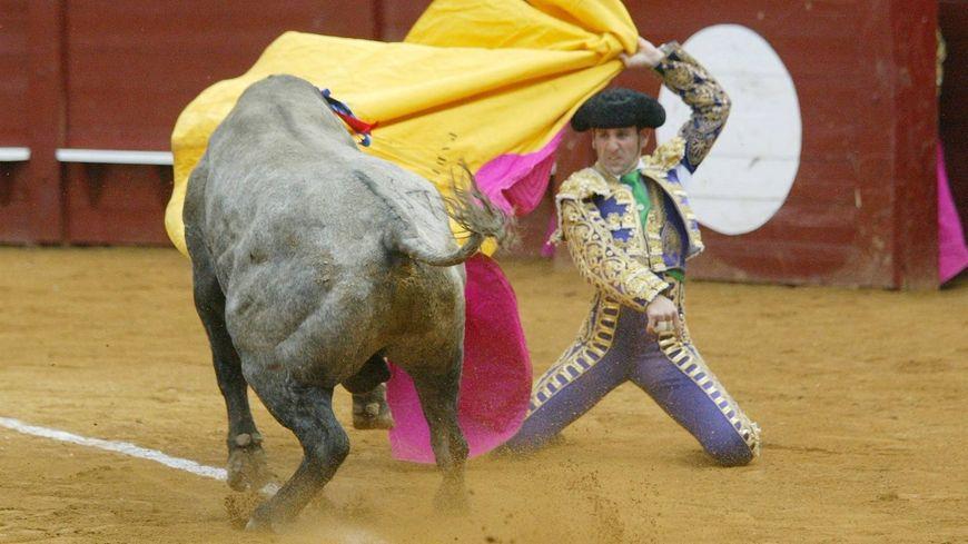 Les anti-taurin veulent l'organisation d'un référendum sur la corrida
