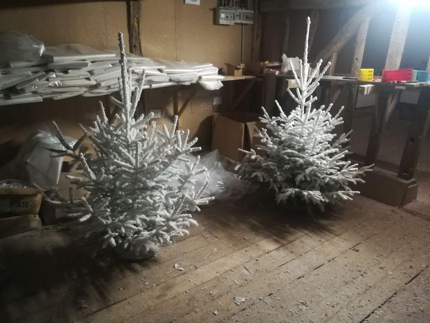 Les sapins de Tailly floqués avec de la fausse neige et des paillettes
