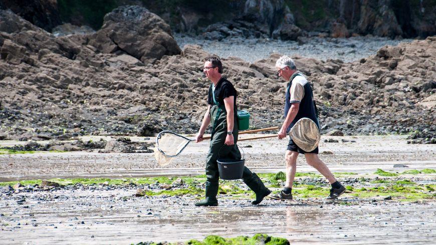 Des pêcheurs de coquillages