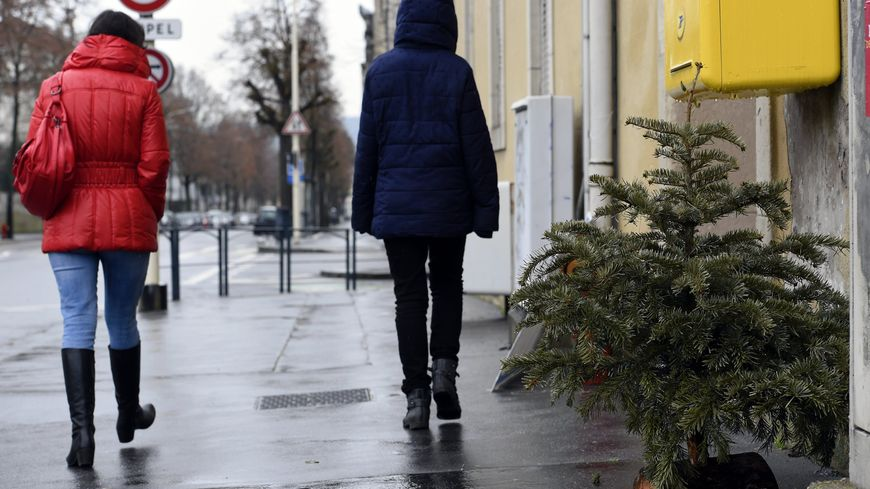Déposer son sapin de Noël dans la rue est interdit et peut vous valoir une amende