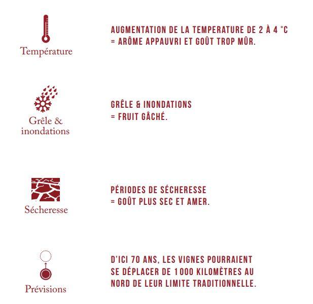 Conditions climatiques en 2050 dans le Bordelais et conséquences sur le vin