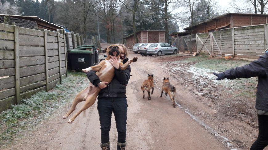 Manon en contrat formation avec l'un des chiens du refuge