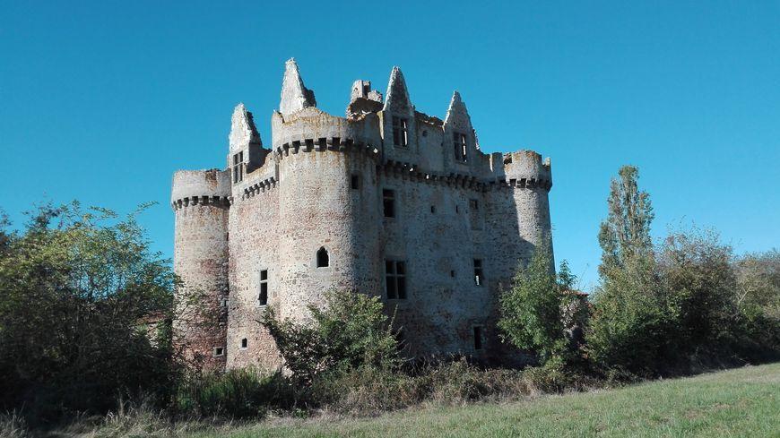 Ce château du nord Deux-Sèvres, en ruines, était en vente depuis dix ans © Radio France - Noémie Guillotin